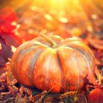 Autunm Pumpkin