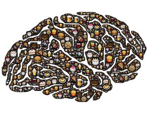 Brain made of food