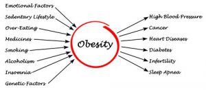 Obesity - Causes and Effects